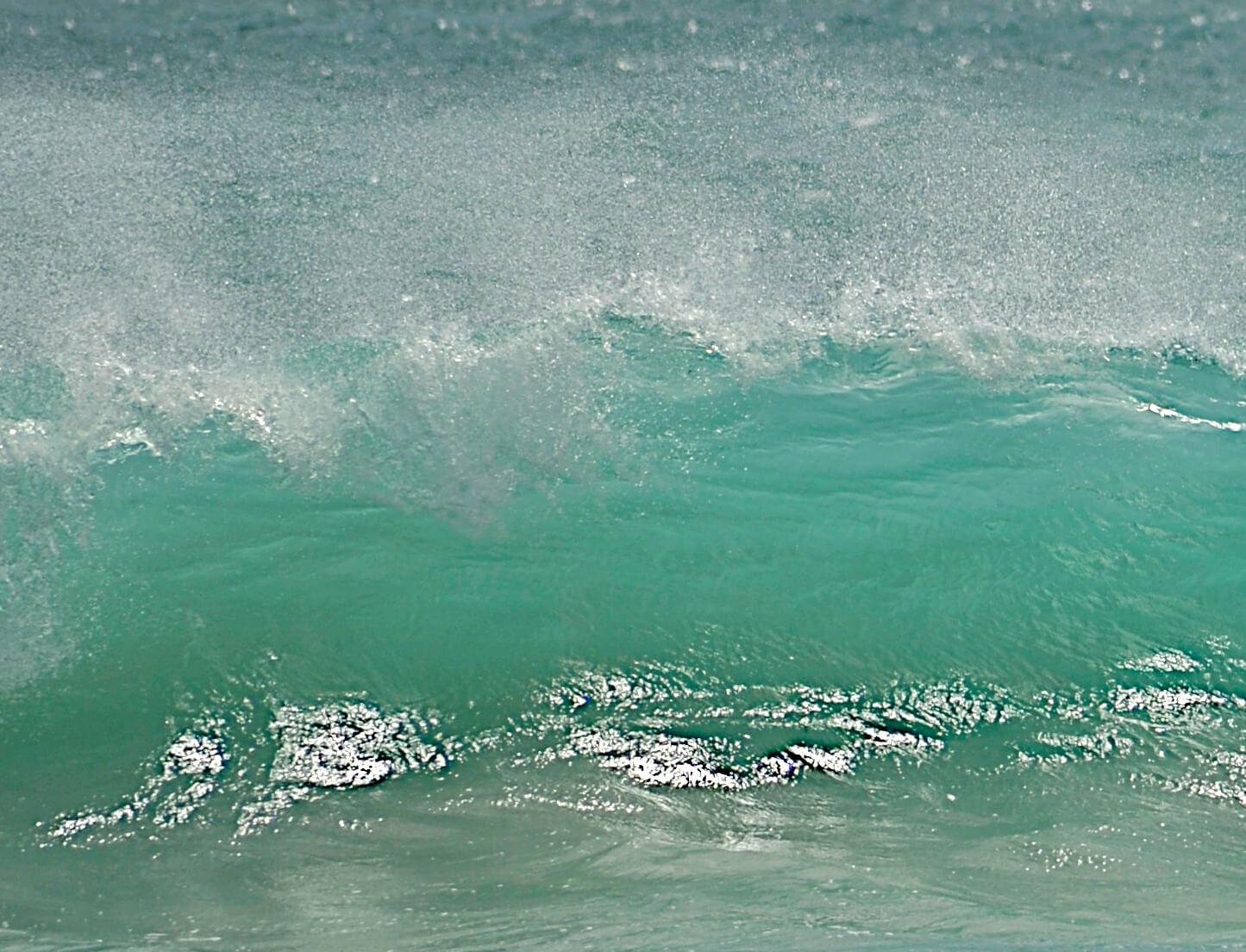 Surfer_NancyBundt_Details_2